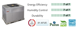 Evolution® Packaged HYBRID HEAT® Dual Fuel System